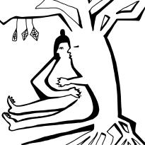 boomknuffelaar